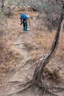 One of Many Sets of Steep Steps on Upper Caprock Coulee Trail in the North Unit of Theodore Roosevelt National Park, North Dakota