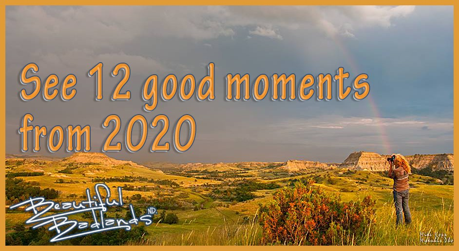 12 good moments from 2020