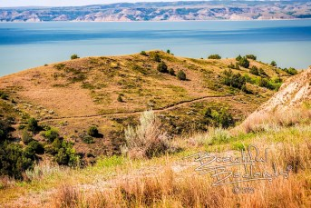 birnt hills