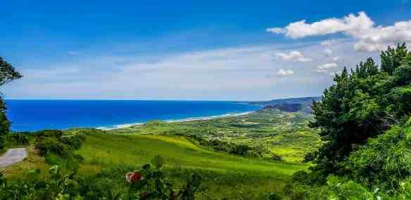 , Barbados Day Dreaming
