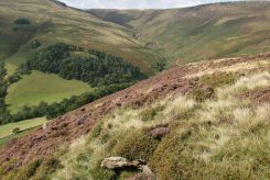 Grindsbrook Clough, from The Nab