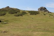 Path to Haytor, Dartmoor