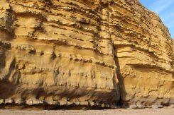 Undercut, base of Burton Cliff, Burton Bradstock