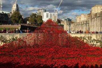 Cascade of poppies, entrance to Tower of London