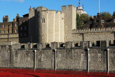 Beauchamp Tower, Poppies, Tower of London