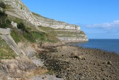 Pen-trwyn, Great Orme