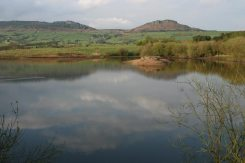The Roaches and Hen Cloud, from Tittesworth Reservoir