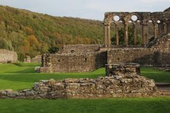 West Range, Tintern Abbey, Tintern