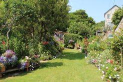 Cottage garden, Pentewan