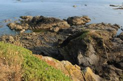 Vellan Drang, Lizard Point