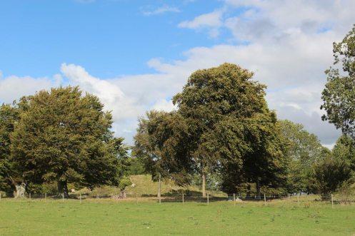 King Barrow Ridge, Stonehenge Down, Stonehenge