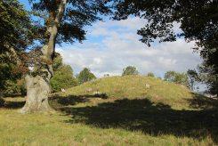 King Barrow, Stonehenge Down, Stonehenge