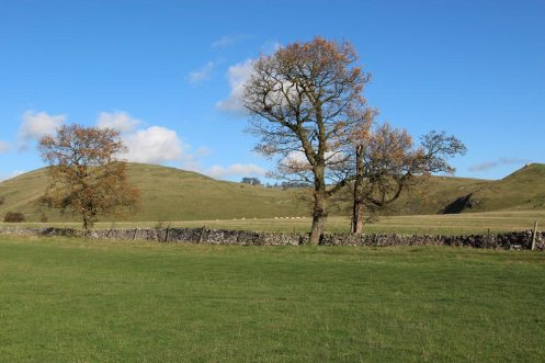 Thorpe Pastures, Dovedale