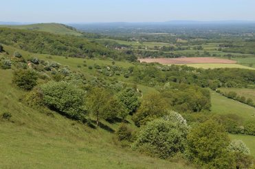 From Ditchling Down, South Downs Way