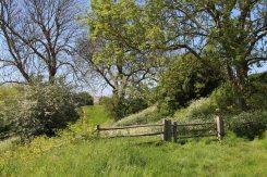 Moat, below Gatehouse to Inner Bailey, Pevensey Castle, Pevensey