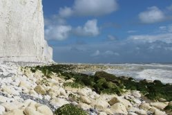 Chalk boulders on wave cut platform, east of Birling Gap