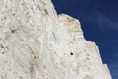 Chalk cliff face, Birling Gap