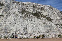 Chalk cliffs, Falling Sands, Beachy Head