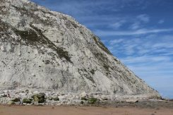 Chalk cliffs, Falling Sands, Beachy Head