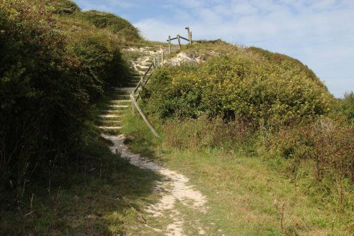 Steps to beach, Cow Gap, Beachy Head