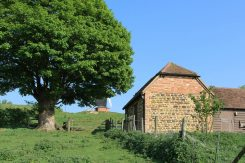 Hartwells Barn and Saunders Field, Brill