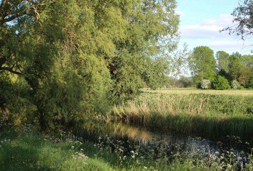 River Great Ouse, Pavenham