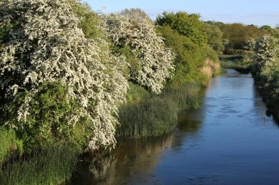 River Great Ouse, Turvey