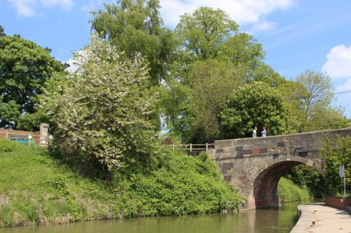 Cemetery Road Bridge, Kennet and Avon Canal, Devizes