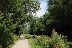 Kennet and Avon Canal, between Bradford on Avon and Avoncliff