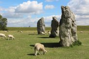 South East Sector, Avebury Henge