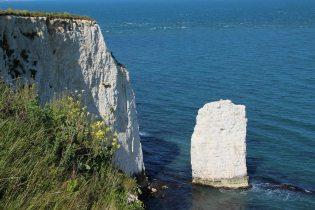 Chalk Sea Stack, Old Harry Rocks, Studland