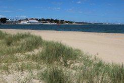 Sand dunes, beach, Shell Bay, Studland