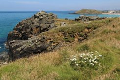 Carrick Du and The Island, St. Ives