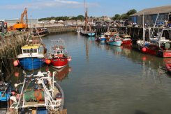 Fishing boats, Whitstable Harbour, Whitstable