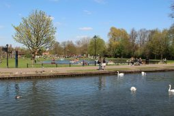 Boating lake, Victoria Park and Kennet and Avon Canal, Newbury