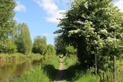 Towpath, Kennet and Avon Canal, near Hungerford