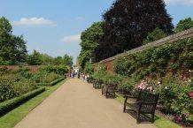 Rose Garden and path to The Tiltyard Cafe, Hampton Court Palace