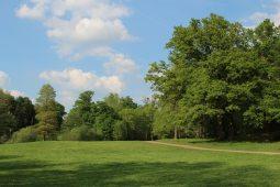 Path beside Wick Pond, Virginia Water