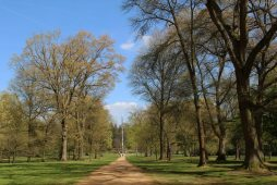 Totem Pole, Canadian Avenue, Valley Gardens, Virginia Water