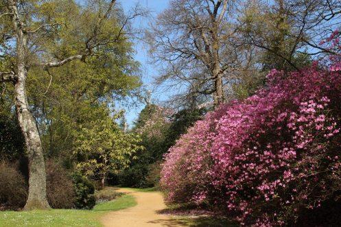 Valley Gardens, Virginia Water