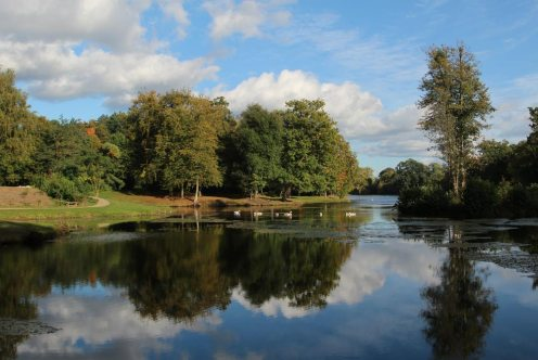 The Lake, Painshill Park, Cobham