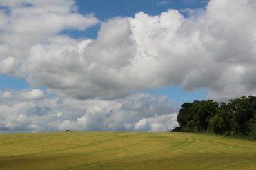 Countryside, Steventon