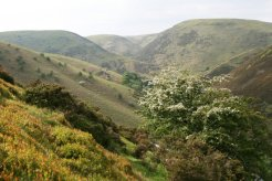 Carding Mill Valley, The Long Mynd