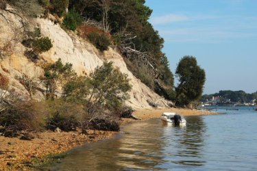 Cliffs, South Shore, Brownsea Island