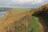 Coastal path to Woolacombe, from Baggy Point