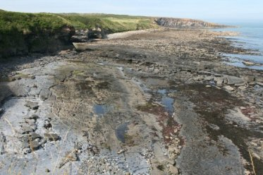 Cullernose Point, near Craster