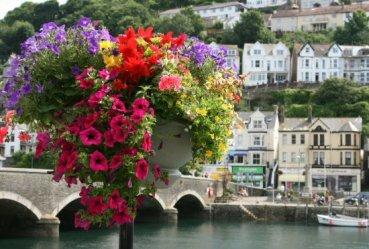 Flower display and the bridge, Looe
