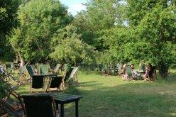 Garden, The Orchard Tea Garden, Grantchester