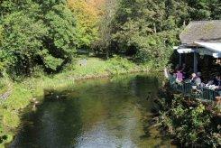 Grasmere Tea Gardens, Grasmere