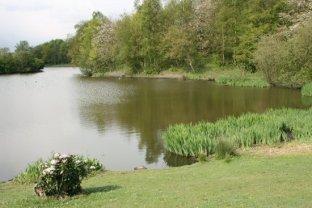 Lake, Central Forest Park, Hanley, Stoke-on-Trent